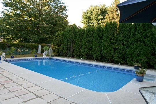 19B Rectangle Inground Pool